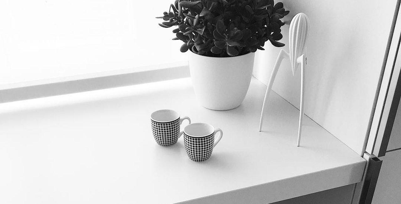 pianta grassa con due tazze di caffè e uno spremiagrumi Alessi bianco
